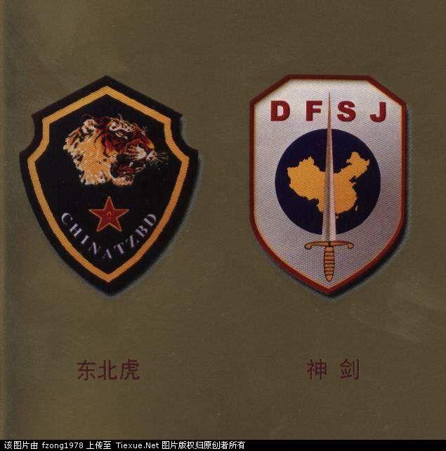 中国七大军区特种部队臂章