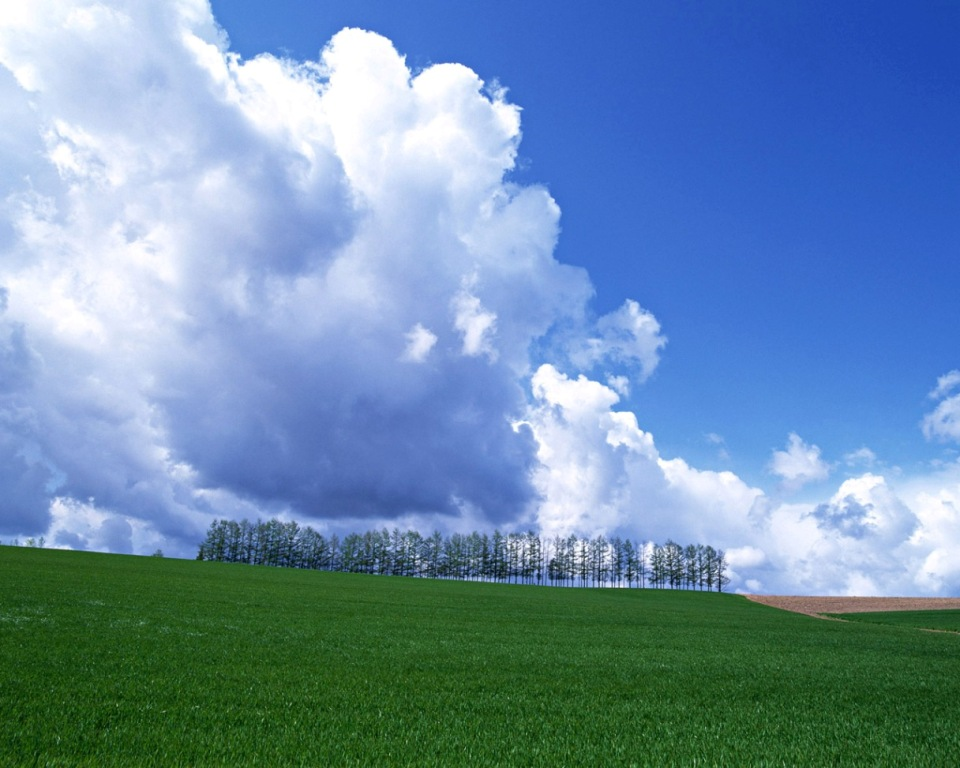 蓝蓝的的天上白云飘