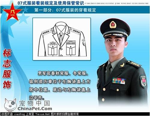 07式新军装详细解读级别资历章图片