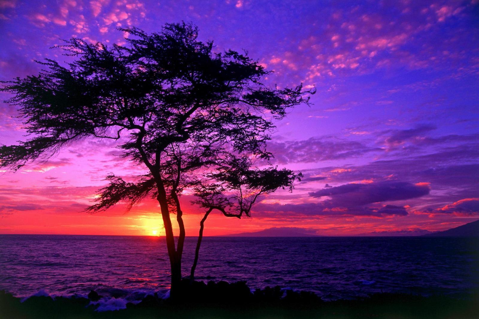 夕阳风景-日落美景图片
