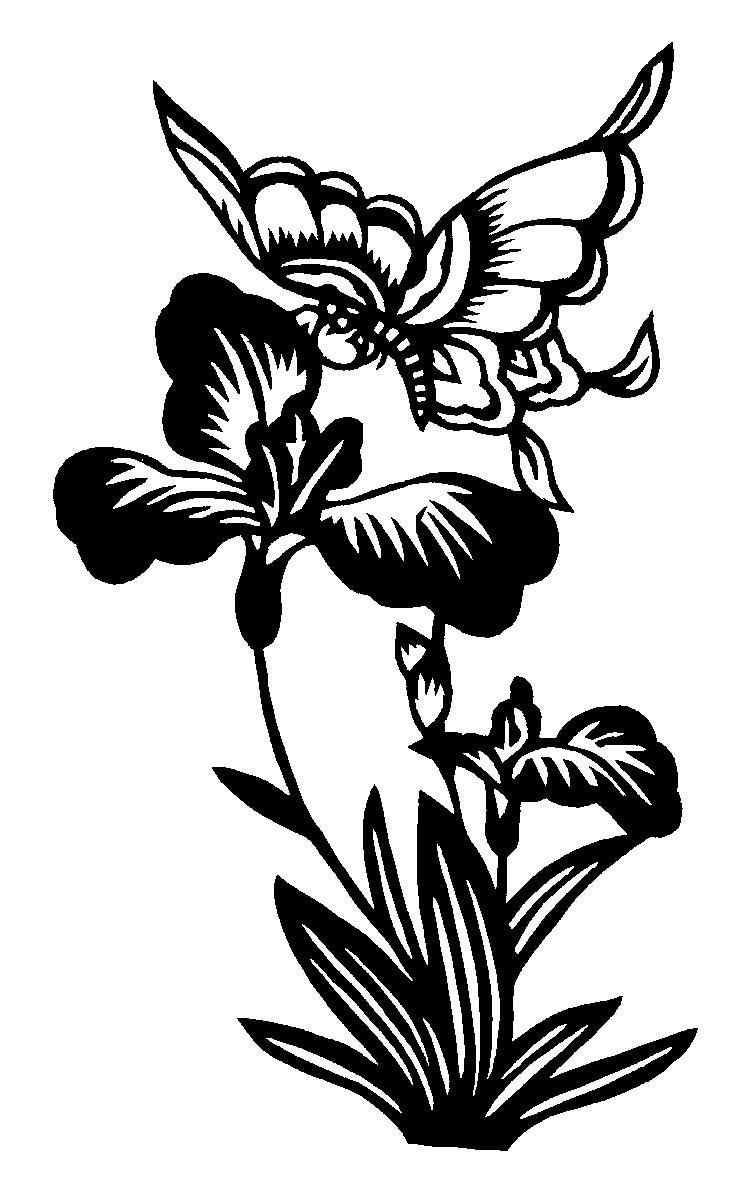 植物剪纸 植物剪纸图案大全 植物剪纸大全图片 藤蔓植物剪纸 植物剪纸图案 植物剪纸图解 植物剪纸大全 剪纸植物四君子 植物剪纸原形图片