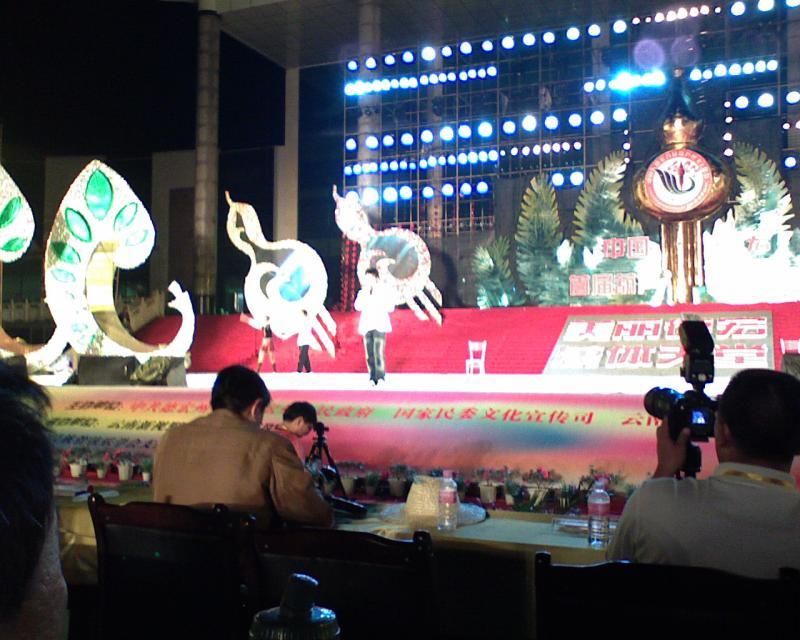 家乡葫芦丝文化节