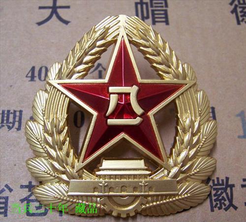 专业技术军官夏常服领花 -帽徽标志一展图片