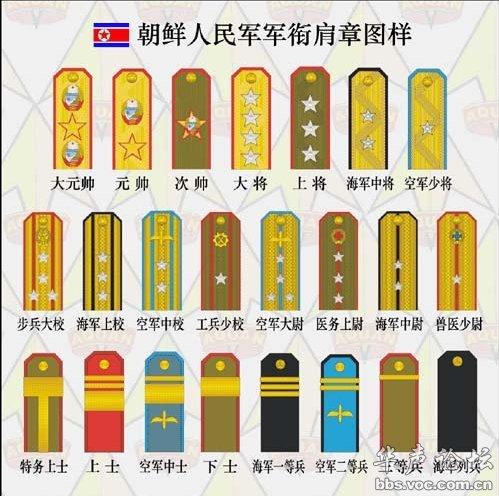 3 大校军衔,是朝鲜的首创,作为副师 正旅 级军官的编制军衔 -朝鲜军