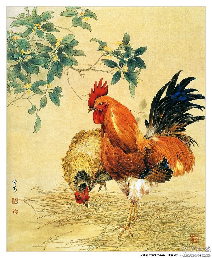 邹传安工笔花鸟画集