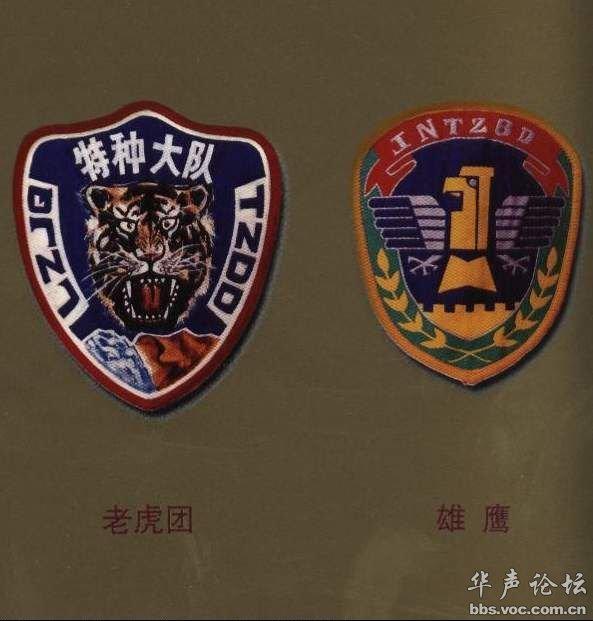 南京军区飞龙特种部队、广州军区南国利剑特种部队-中国军队臂章胸图片
