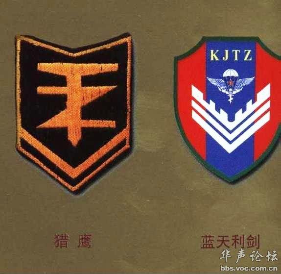 兰州军区夜老虎特种部队、济南军区雄鹰特种部队-中国军队臂章胸薇图片