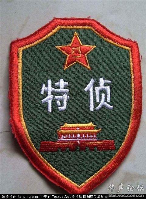 西部特种兵-中国军队臂章胸薇识别大全图片