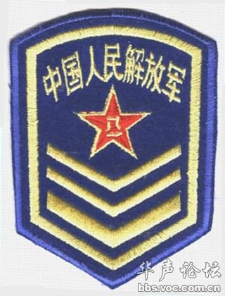 中国军队臂章胸薇识别大全图片