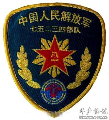 中国军队臂章胸薇识别大全
