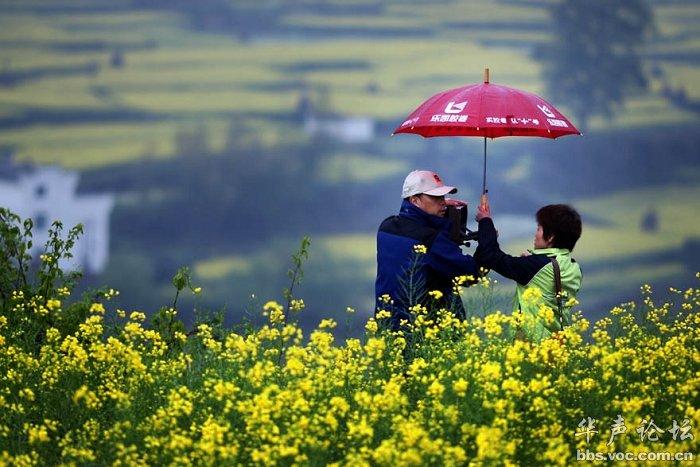 中国最美的乡村 婺源图片