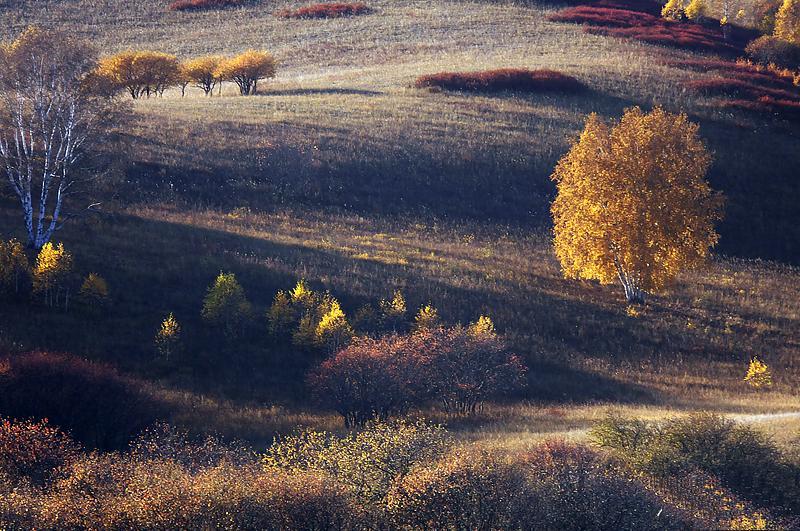 秋天的景物-深秋的景色