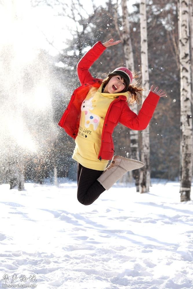 我爱你塞北的雪