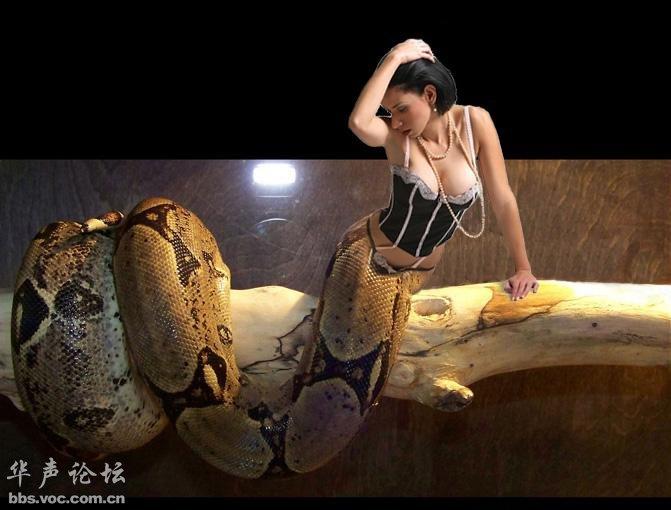 啊!美女蛇真的出现了多图页 1 搞笑图库