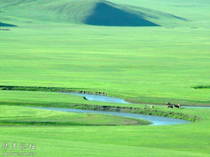 2011青青草原情 自驾 奔赴美丽的呼伦贝尔草原6日活动计划
