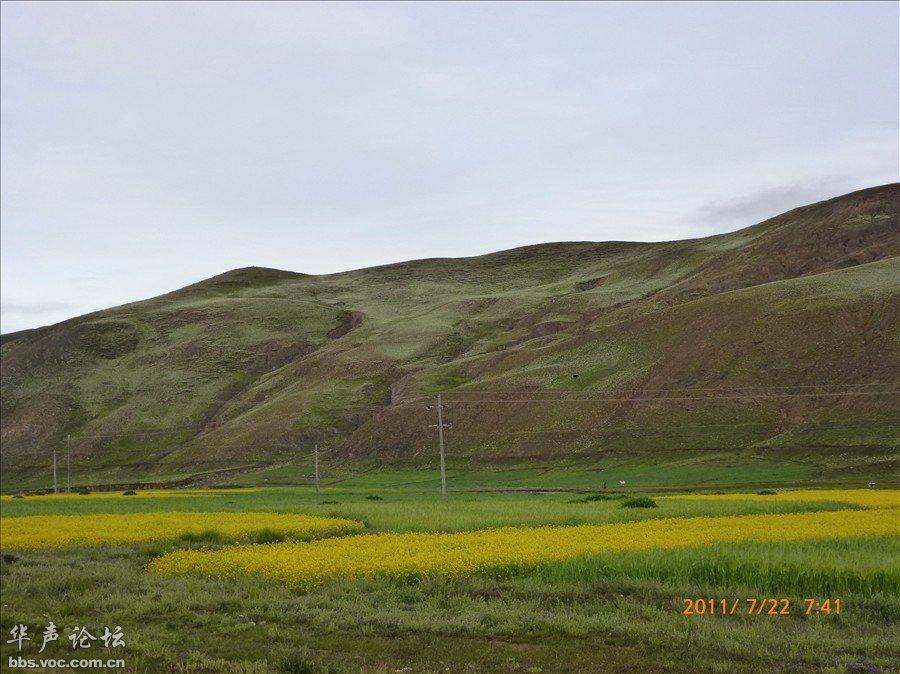 青藏高原风景电视 桌面壁纸风景青藏高原 青藏高原黑白风景图片