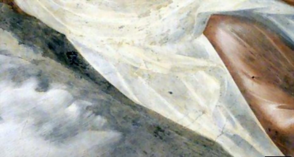 意大利乔托著名湿壁画惊现 鬼脸