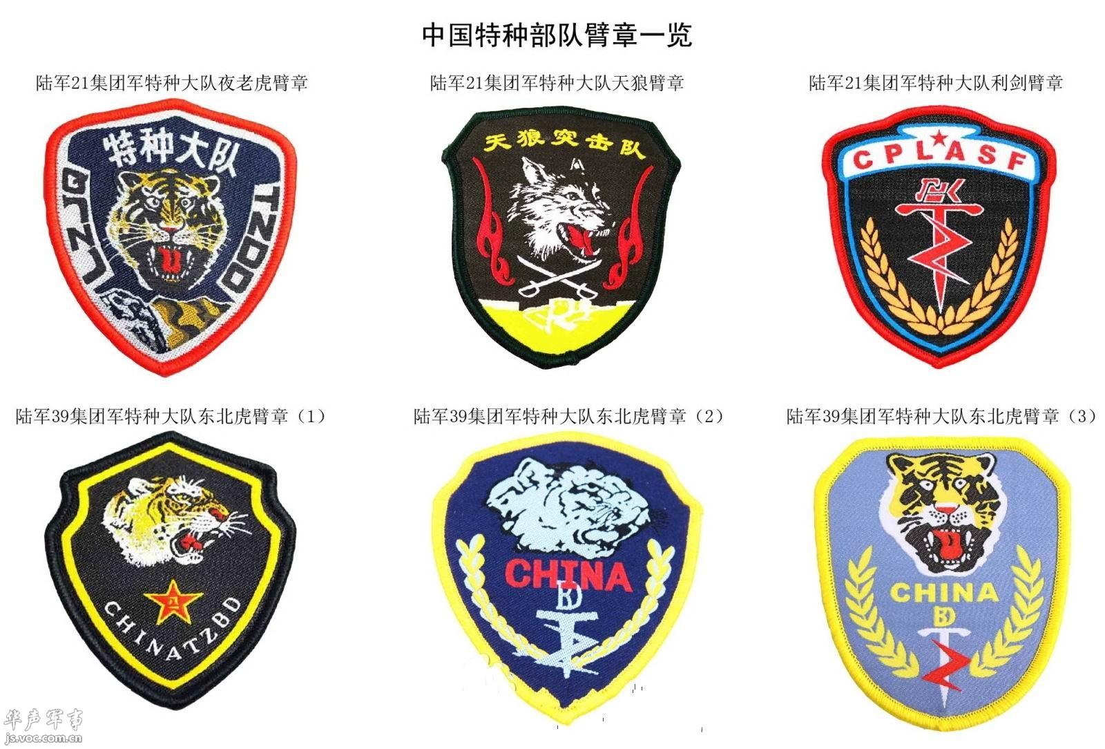 中国特种部队臂章大全图片
