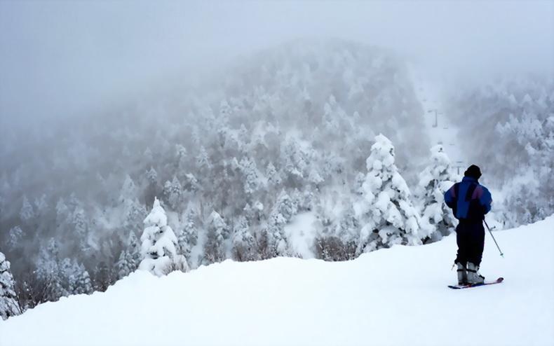 北志贺高原,这里是滑板滑雪的天堂.
