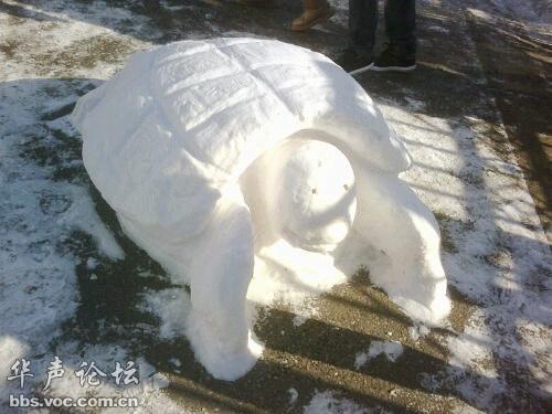 爱上狗狗群_一场大雪之后,妹纸纷纷爱上了门卫大叔。。。 - 搞笑图库 - 华 ...