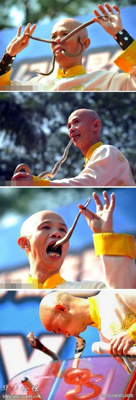 亲吻小核_[搞笑图文]蛇年大吉,与蛇共舞秀。。。。[2-17] - 搞笑图库 - 华声 ...