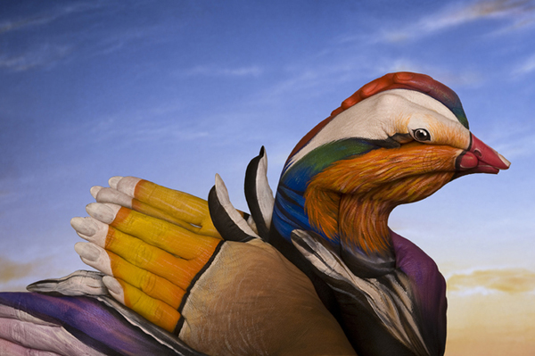 手上动物绘画艺术 高清图片