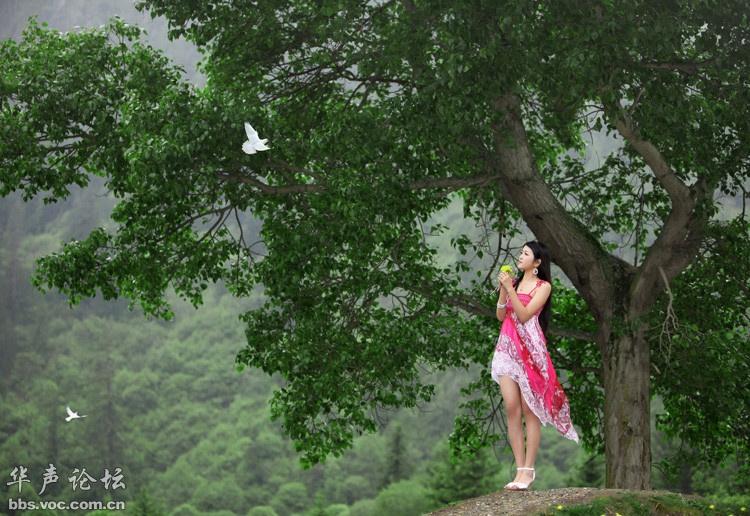 青草地上的红裙美女 美女贴图
