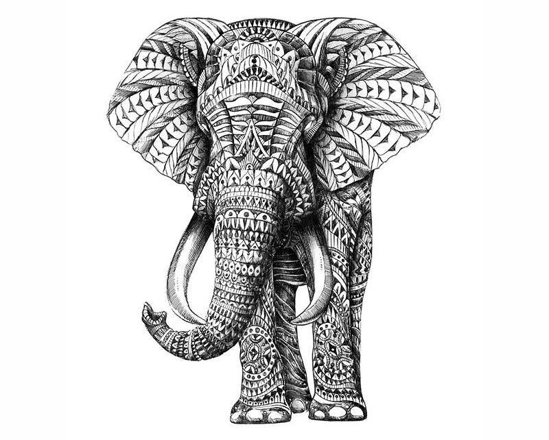黑白动物装饰画素材