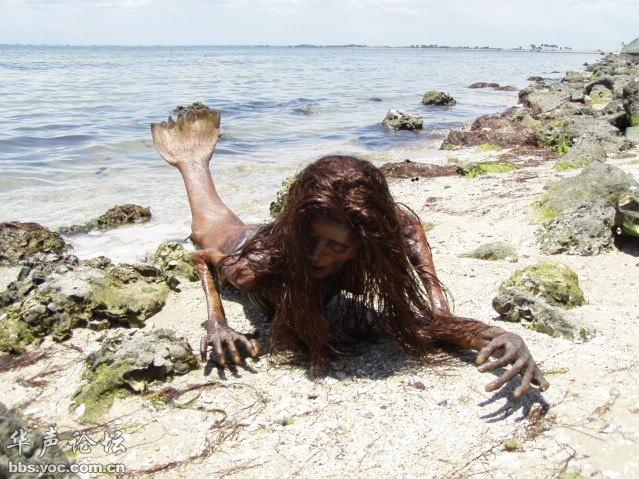 世界上真的有美人鱼吗