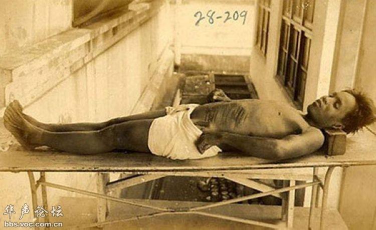 731细菌战部队电影_变态731部队的新罪行 - 图说历史 国内 - 华声论坛