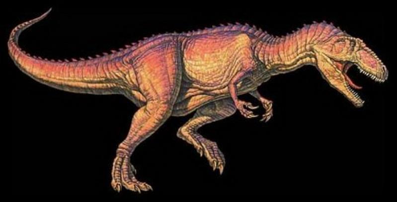 已灭绝的25种史前生物 恐龙中伤齿龙智商最高图片