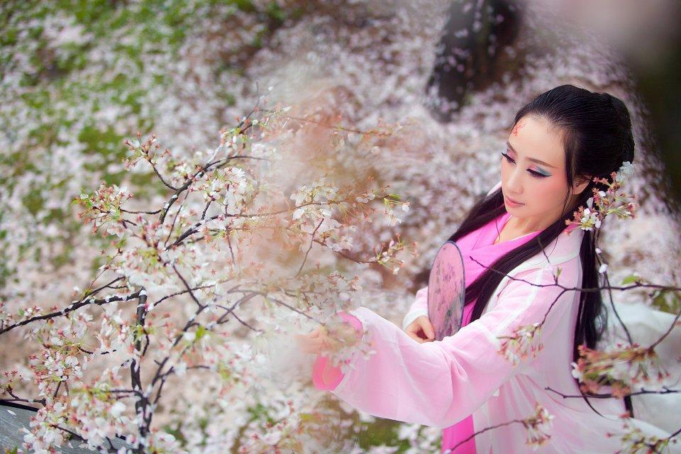 主页PS欣赏● 白狐 - 寒情雪 - 寒情雪的博客