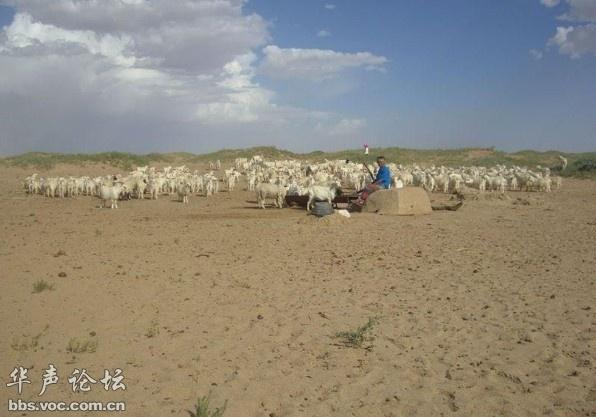如何解决中国土地沙漠化,干旱,高温,水灾,泥石流,龙卷风,沙尘暴,雾霾等环境问题