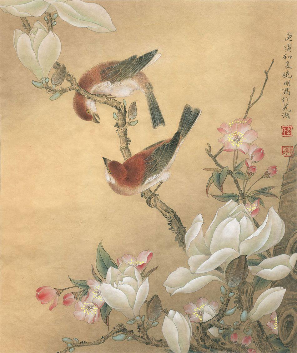 李晓明工笔太平鸟画法