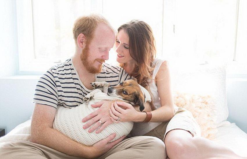夫妇与爱犬拍 亲子照 显爱意