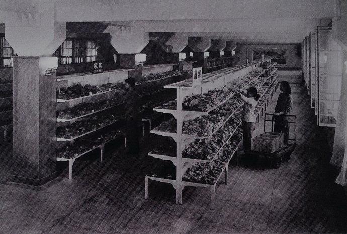 货柜上陈列小袋包装的蔬菜、禽肉制品,是现代生鲜超市之雏形