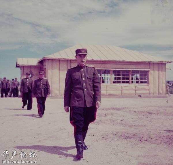 朝鲜 祖国解放战争 后的内部清洗