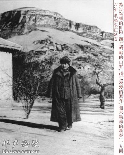 月沧桑 毛泽东历史照片图片