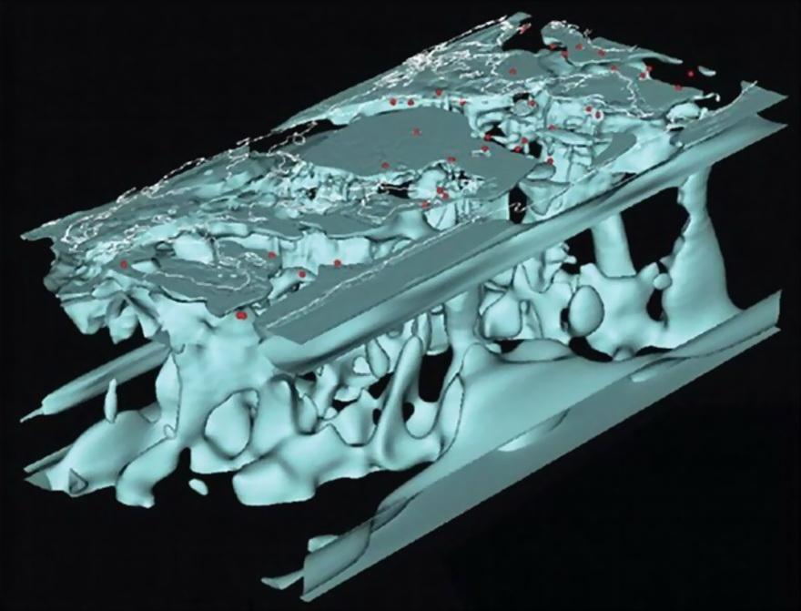 目前最新最精确的地球内部结构图出炉