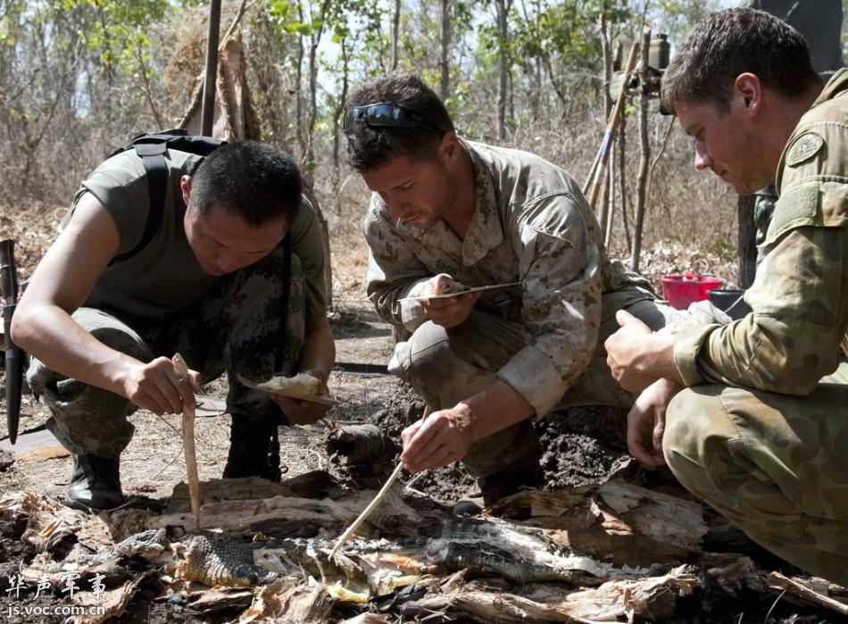 赴澳训练野外生存的我军战士