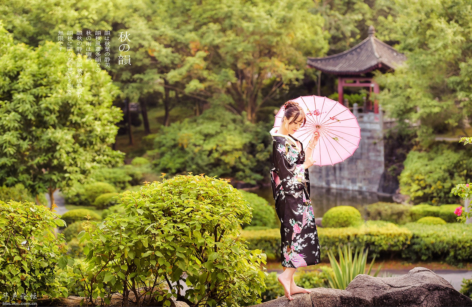 5466,秋韵(原创) - 春风化雨 - 诗人-春风化雨的博客