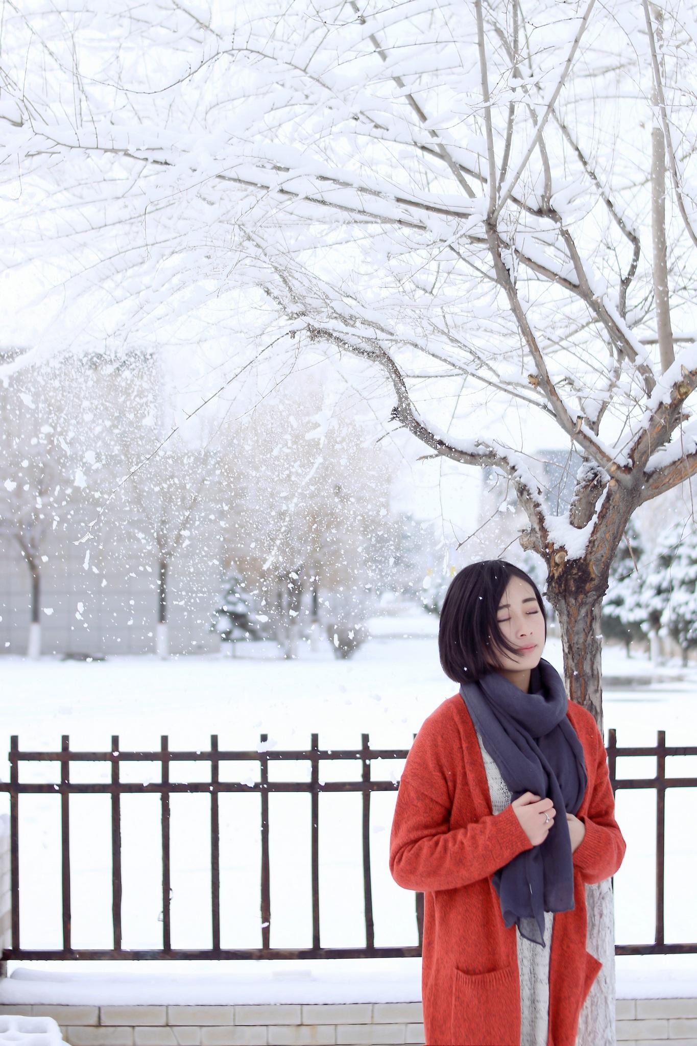 【现代时尚素材篇】雪里红,太美 - 浪漫人生 - .