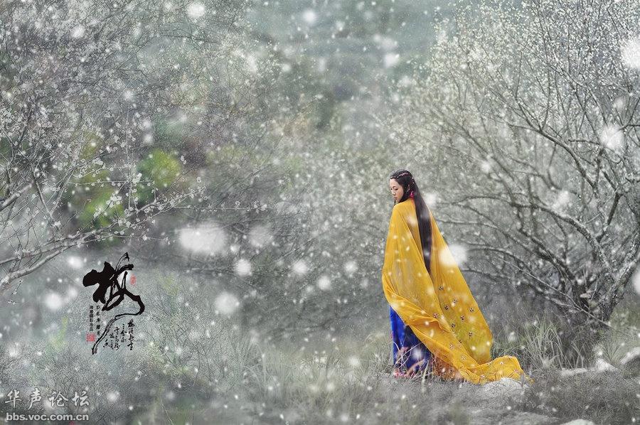 踏雪寻梅怕【转载】