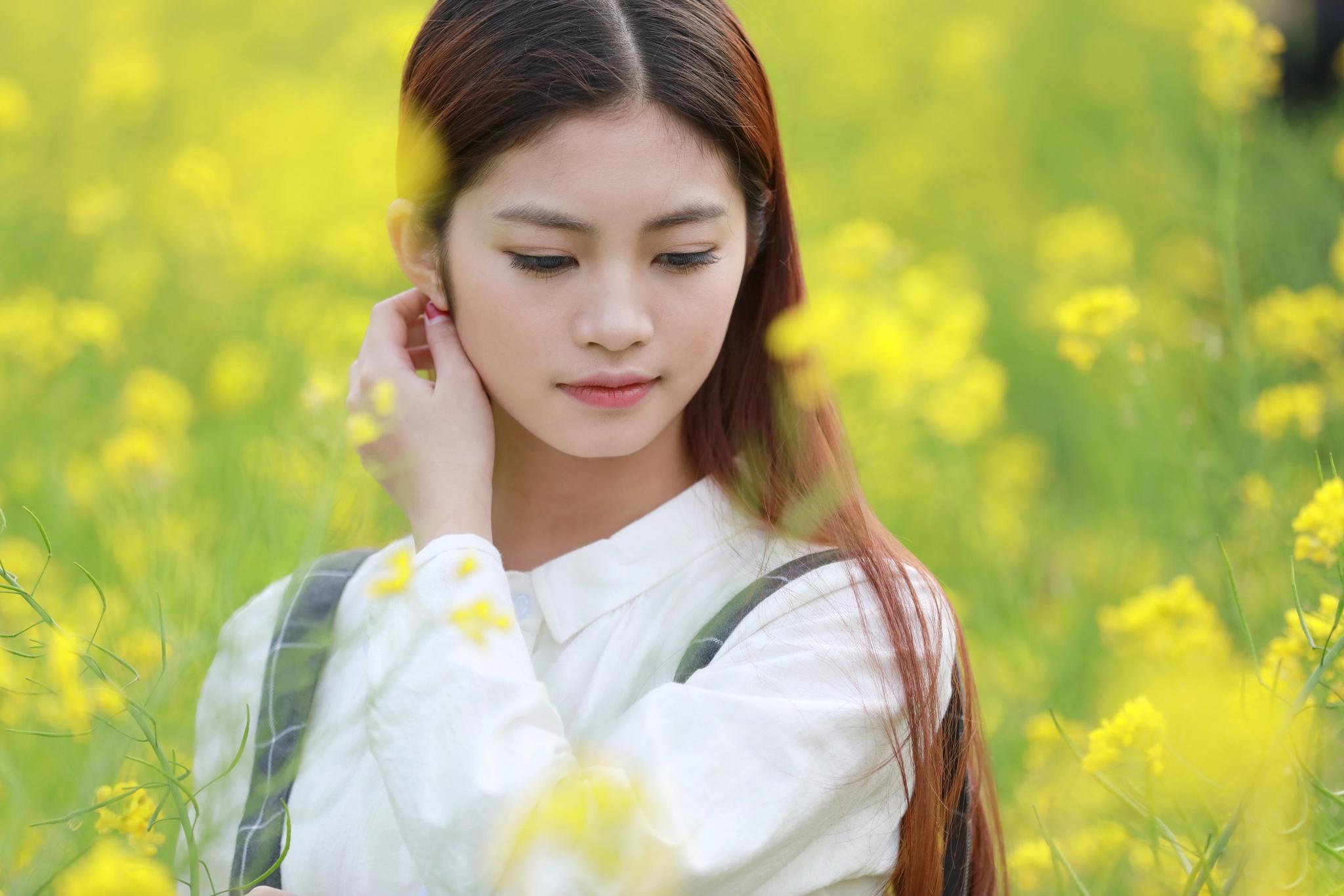 【现代时尚素材篇】一片黄花 樱花开放 - 浪漫人生 - .