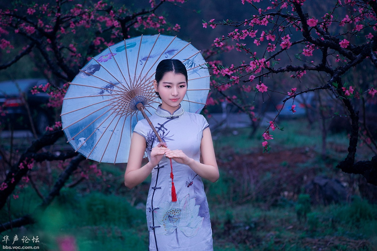 旗袍美眉  桃花情缘 - 花開有聲 - 花開有聲
