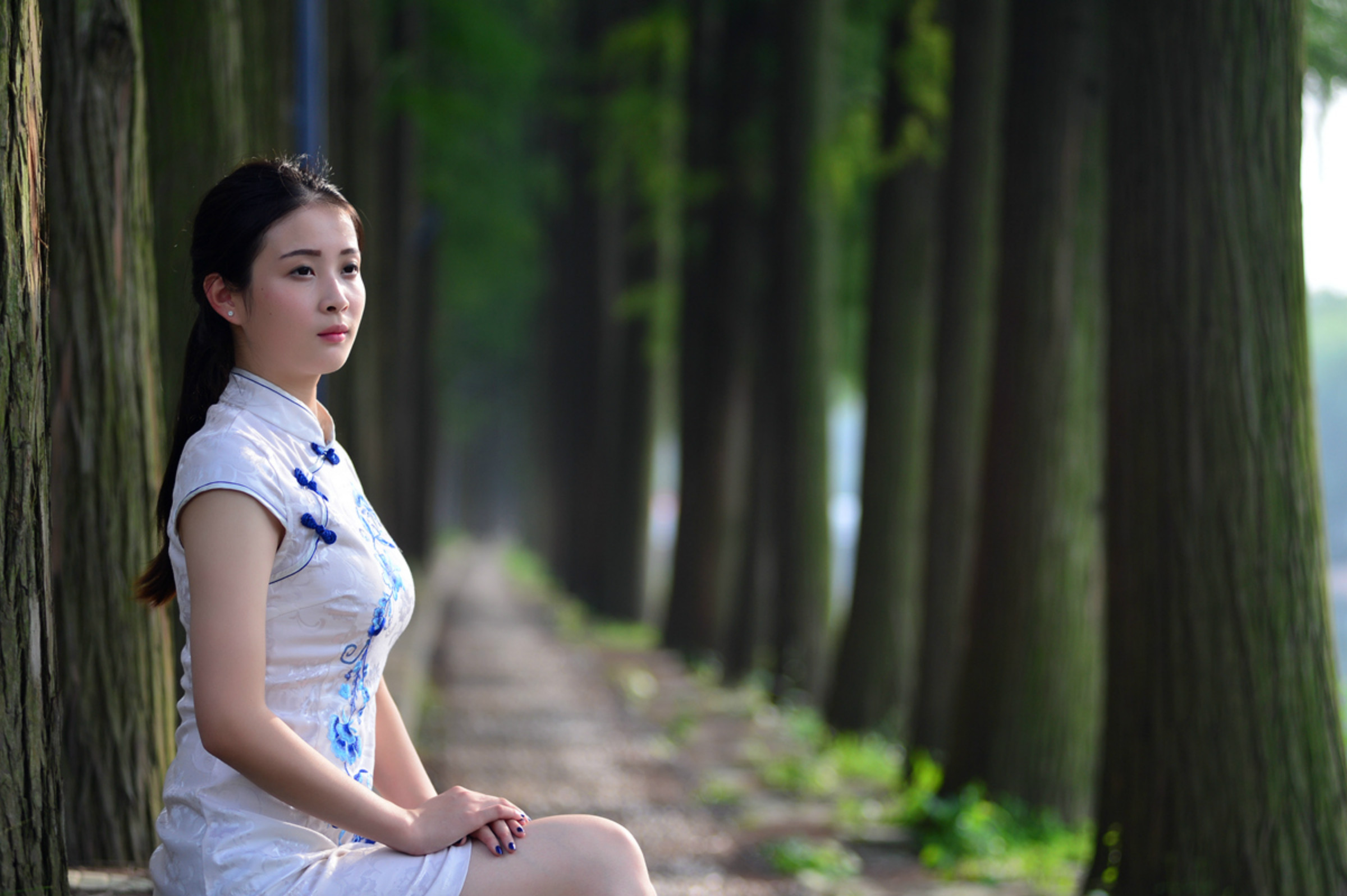 旗袍佳人 优雅芬芳 - 春色满园 - 春色满园