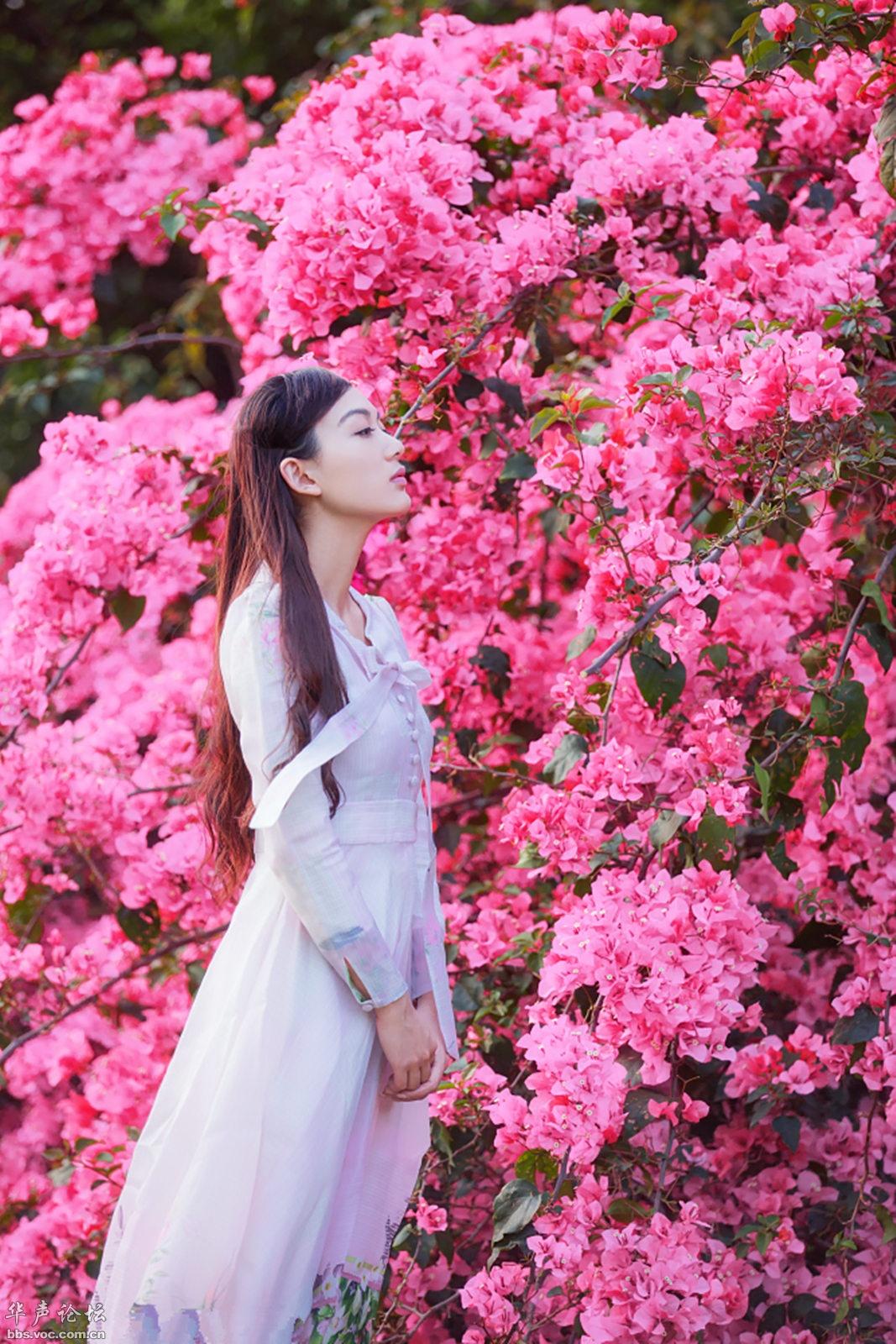 花开灿烂 - 花開有聲 - 花開有聲