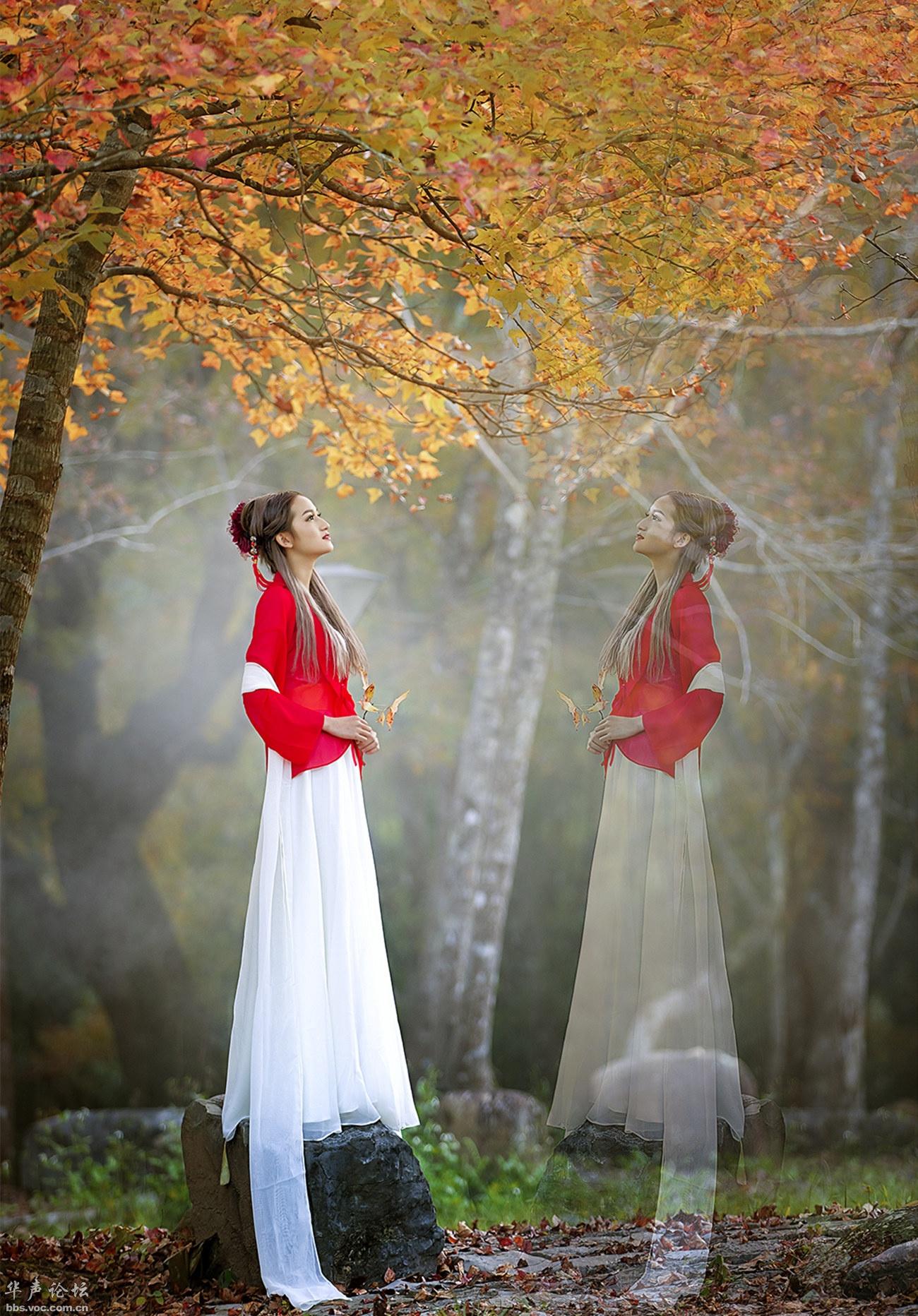 人生需要沉淀  宁静才能致远 【情感人生】- 花仙子 -花仙子的博客