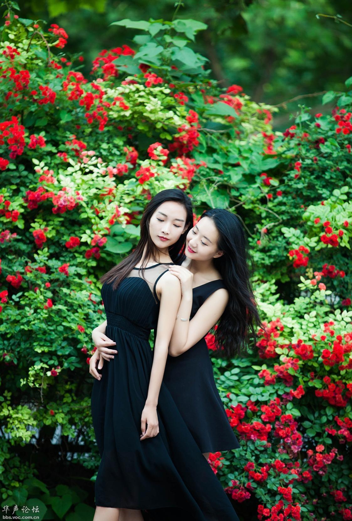 蔷薇下的女神[分享]