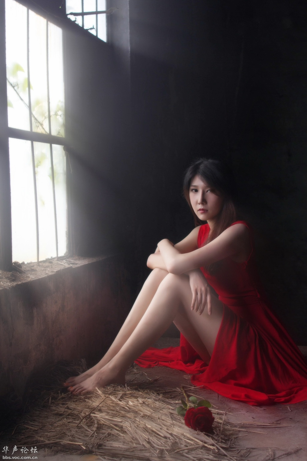 【人像摄影】《樱花语》《绽放的玫瑰》  -  花仙子  -  花仙子的博客.